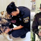 Deputy Adopts the Dog She Rescued Seven Months Ago
