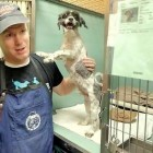Man Gives Free Haircuts to Shelter Dogs So They'll Be Adopted