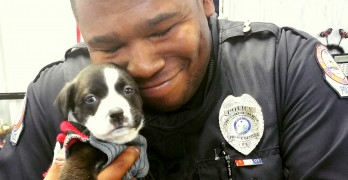 A Police Officer Responds to a Call… and Immediately Falls in Love