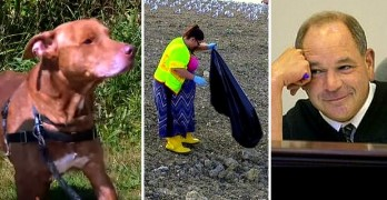 Woman Who Let Dog Live in Squalor Sentenced to Work at a Landfill