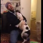 "Man Gets ""Mauled"" With Kisses and Hugs by Wiggly Pit Bull"