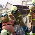 Dog Is Miraculously Pulled Alive from 17-Story Building Collapse