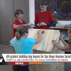 Fourth Graders Build Dog Houses To Help Pets in Need