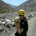 Farmworkers Trapped in Flooded Area Reunite with Lost Dog