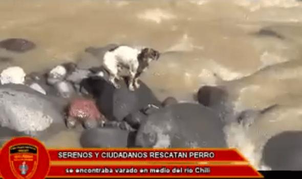 Photo credit: Seguridad Ciudadana Arequipa/Facebook