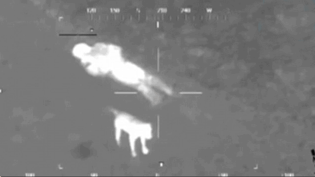 Thermal Camera Helps Rescue Dog and Owner Stuck in Mud