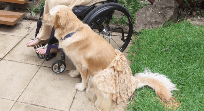 Service Dog and Teenage Owner Dress Alike for Formal Dance