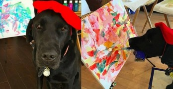 Dog Artist Creates Art to Sell for Charity