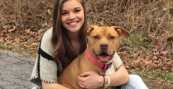Cop Drives 770 Miles to Reunite Dog With Accident Victim's Family