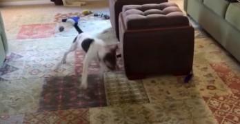 Round and Round He Goes!!!