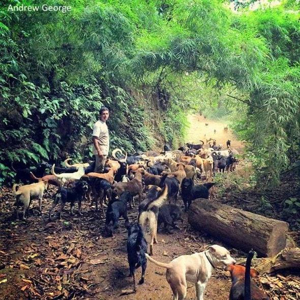 3.31.16 - Costa Rican Sanctuary3