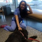 Hospital Starts Using Therapy Dogs to Help Stressed Staff