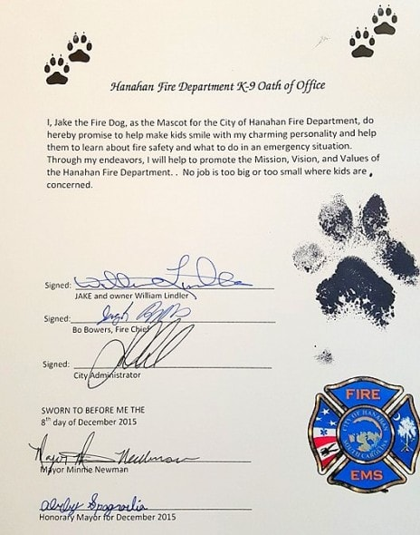 3.4.16 - Puppy Burned in Fire Becomes a Firefighter2
