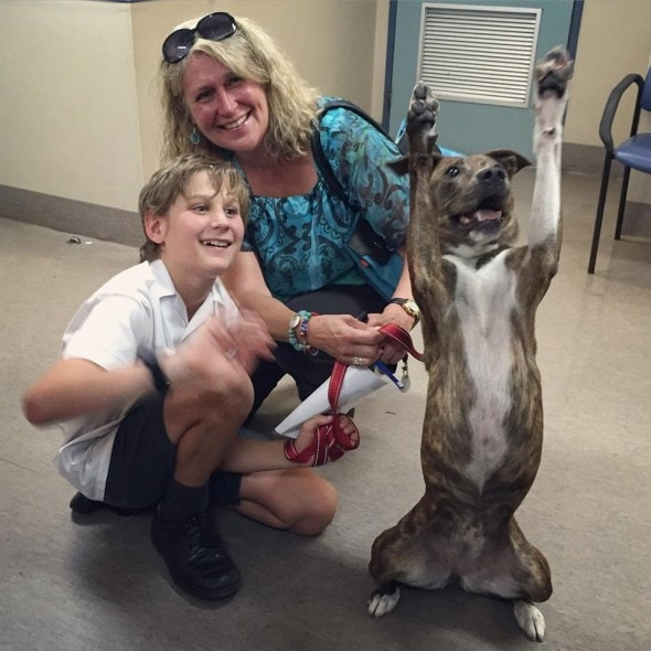 Cosco with her new family. Photo credit: Lort Smith Hospital.