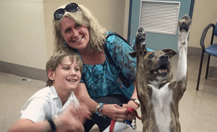 "Recently Adopted Dog Takes Best ""Adoption Photo"" Ever"