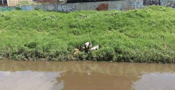 Man Saves Dog Drowning in Rio Grande