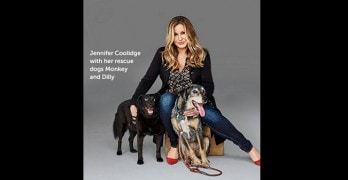 Help Celebrate 150 Years of the ASPCA with 150 Days of Rescue
