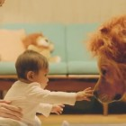 Dog Dons Lion's Mane to Comfort Frightened Baby