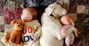 Adorable Photos of Dog and Baby Take Internet by Storm!