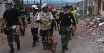 Dog Buried In Rubble by Ecuador Earthquake Is Rescued Alive