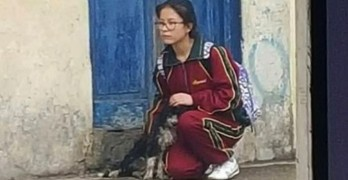 Schoolgirl Protects Street Dog From Torrential Downpour