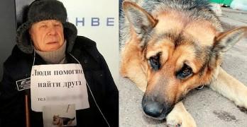Elderly Man Dies of Heartbreak After Not Finding His Stolen Dog