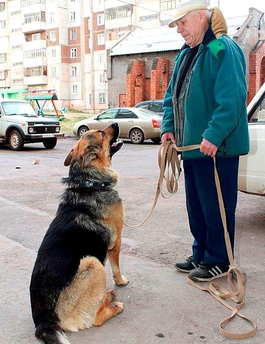 PAY-Vladimir-Davydov-and-Yan-the-dog.jpg