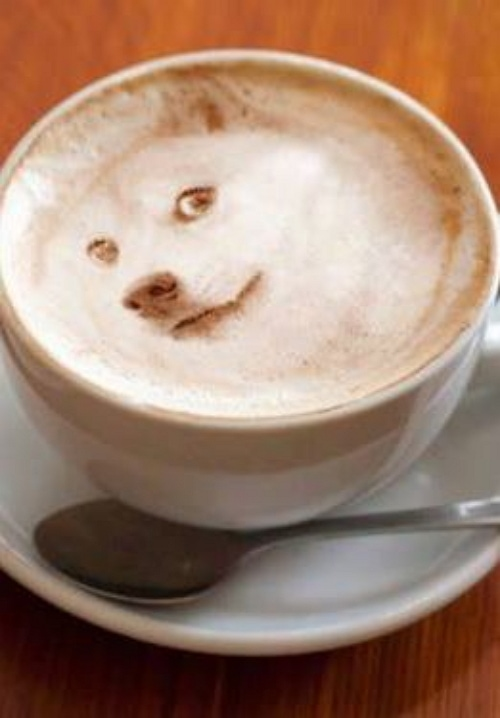 Coffee Good Or Bad For Dogs