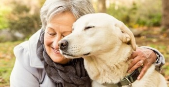 Vitamin D: Seniors Enjoy Health Benefits From Dog Ownership