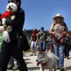 San Francisco Dog Owners Protest Leash Laws at the Mighty Mutt March