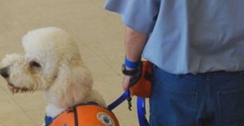 Tennessee Inmate Program Graduates Service Dogs