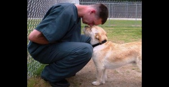 Teen Inmates Connect With Rescue Dog