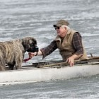 Frozen Mastiff! Dog Rescued After Falling Through Alaska Lake Ice