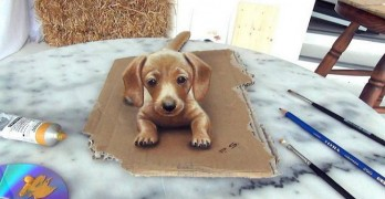 See A 3D Dachshund Come to Life Before Your Eyes