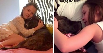 Little Girl Sweetly Serenades Foster Dog to Sleep