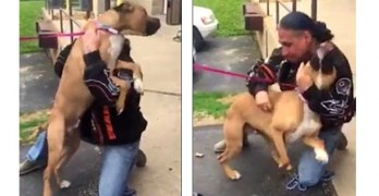5.11.16 - Stolen Dog Goes Absolutely Bonkers When He Sees His Dad After Two Years4