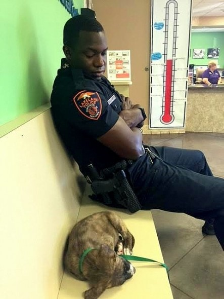 5.24.16 - Officer Refuses to Leave Stray Puppy's Side Until He Knows She's Safe3