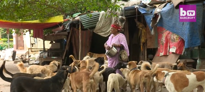 The Dog Lady of New Delhi Feeds 400 Dogs a Day