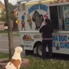 Well-Behaved Pit Bull Waiting Patiently for Ice Cream Treat Is the Cutest Thing You'll See all Day