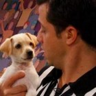 Former Puppy Bowl MVP is a Star at Home