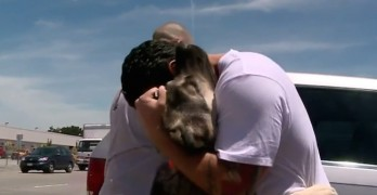 FEELZ! Bay Area Soldier Reunites With Dog He Befriended in Iraq