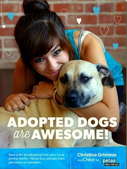 6.13.16 - Christina Grimmie - Dog Lover4