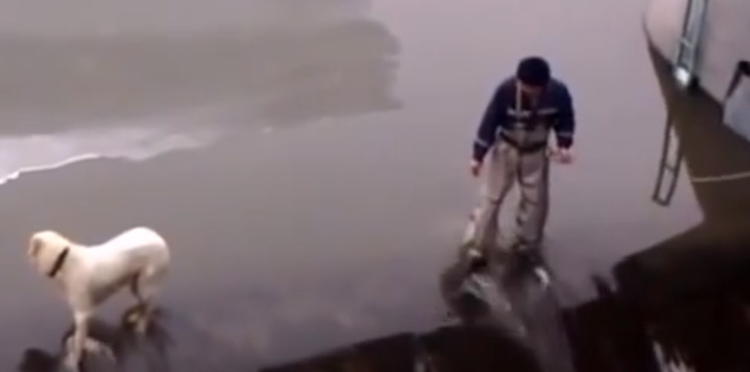 Man Risks Life and Limb to Rescue Dog Stuck on Edge of Dam