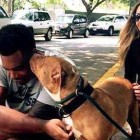Baltimore Ravens Rookie Goes to Shelter and Asks to Adopt Dog that No One Wants