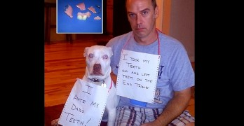 6.17.16 - Dog Shaming - Father's Day Edition40