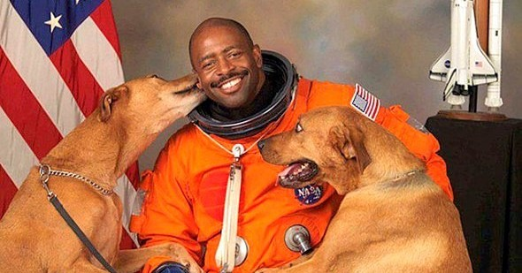 Dogs Who Are Completely Enamored With Their Dads
