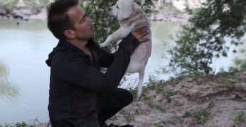 If I Could Talk: A Short Film About the Love and Appreciation of a Rescue Dog