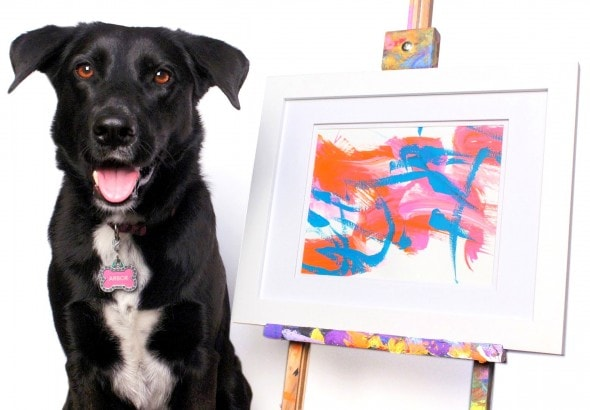6.22.16 - Rescue Dog Now Raises Money for Other Shelter Dogs with Her Paintings2