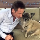 "David Duchovny Issues ""Lick My Face"" Challenge for Charity"