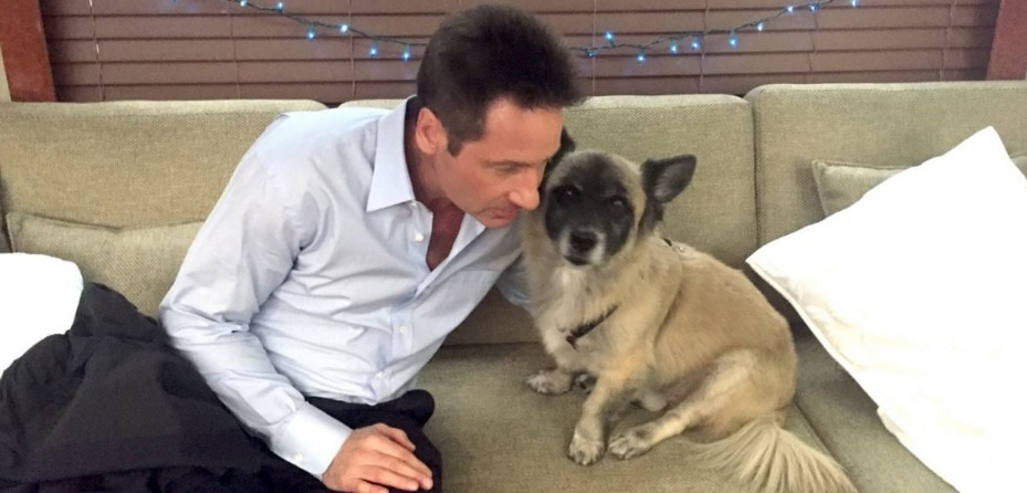 """David Duchovny Issues """"Lick My Face"""" Challenge for Charity"""